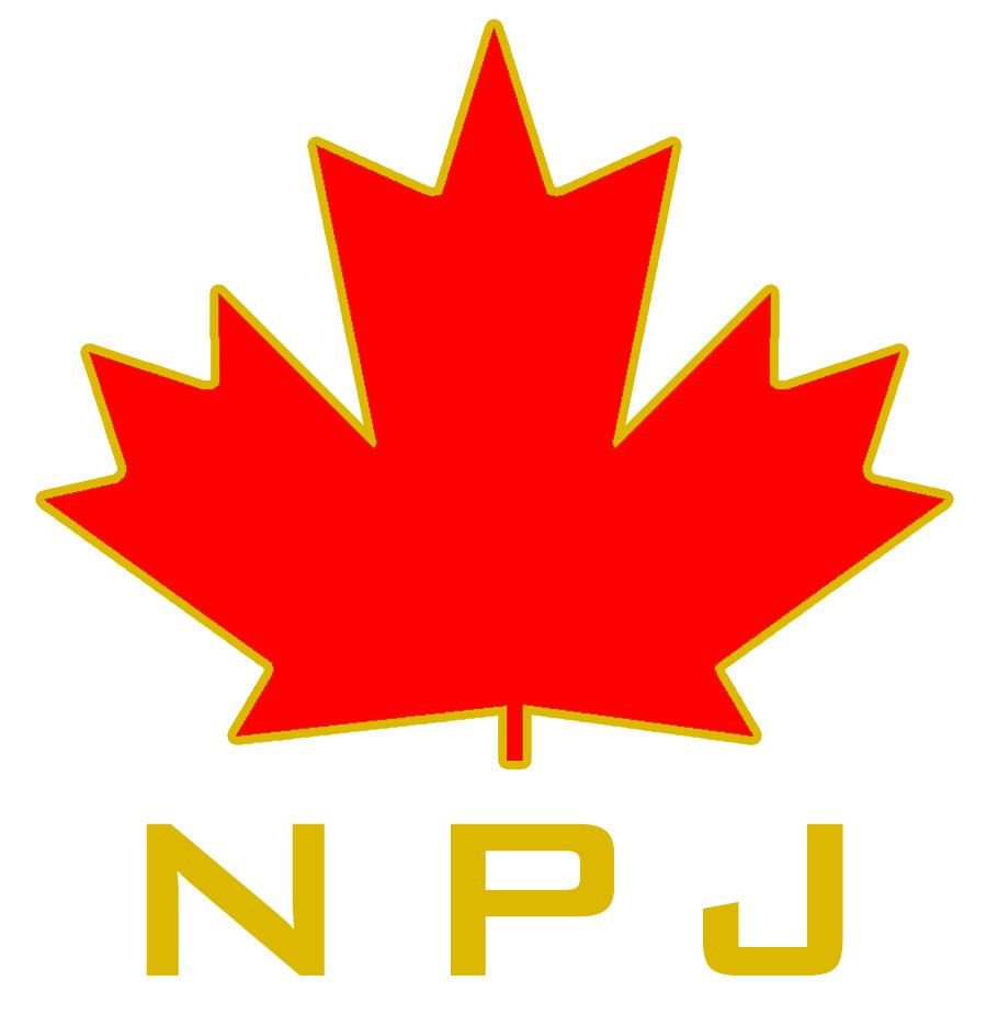 NPJ Boilers Logo
